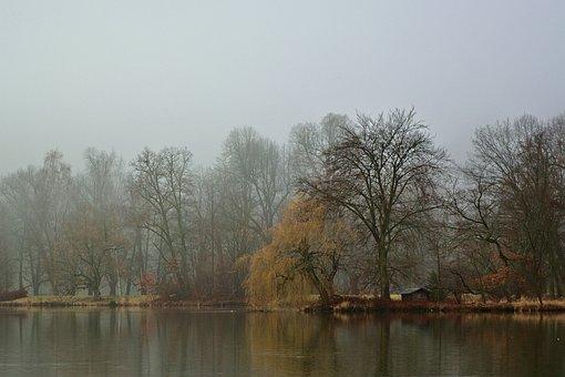 Morning, Fog, Lake, Landscape, Morgenstimmung, Brine