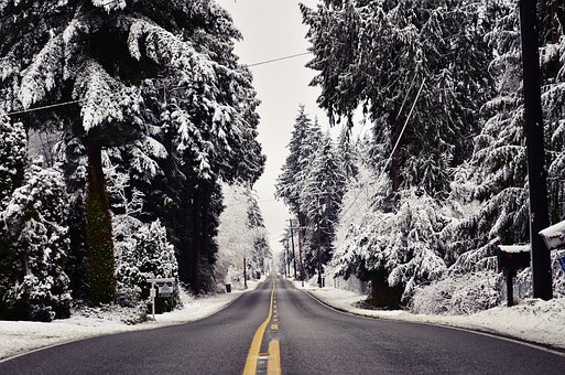 Snow, Road, Winter, Landscape, Trees, Nature, Cold