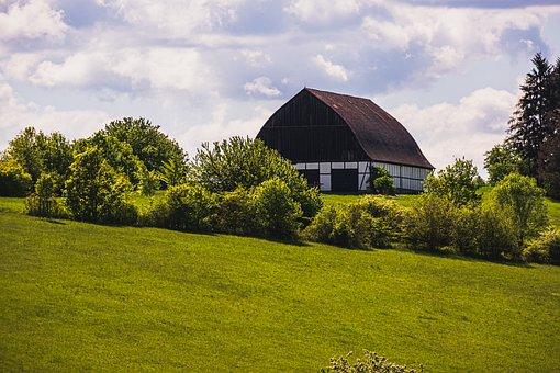Farmhouse, Stall, Barn, Agriculture, Summer, House