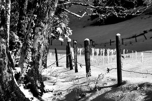 Hagertal, Nature, Winter, Alm, Mountains, Landscape