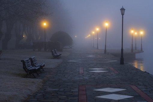Fog, Mist, Magic, Mood, Landscape, Trees