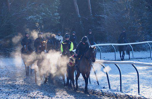 Newmarket, Racecourse, Jockey, Winter, Equestrian