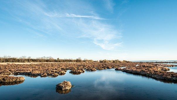 Sky, Blue, Pond, Sea, Field, Travel