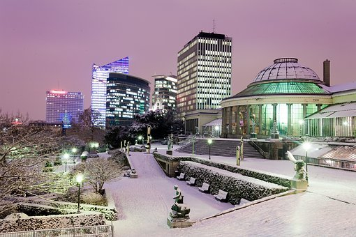 Brussels, Snow, Europe, Traffic, Car, Bottling, Botany