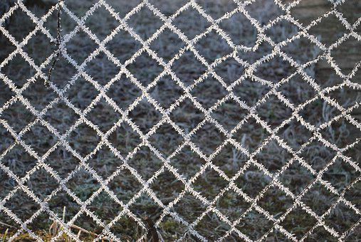 Wire, Net, Nature, Wire Mesh, Fence