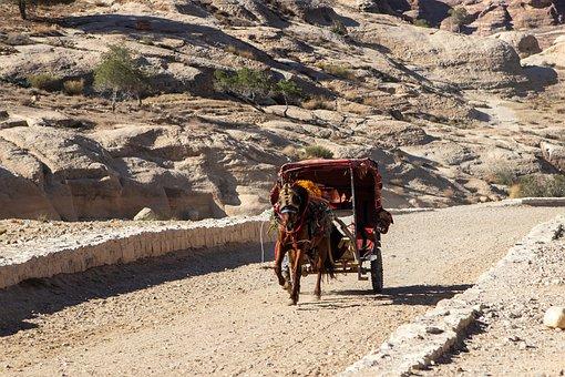 Horse, Petra, Jordan, Travel, Wagon, Coach