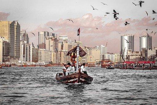 Water Taxi, Dubai, River, Birds, Gulls, Landscape