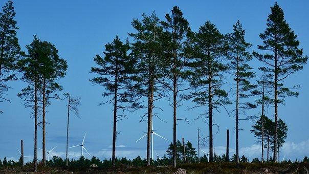 Wind, Wind Turbine, Nature, Wind Energy, Himmel