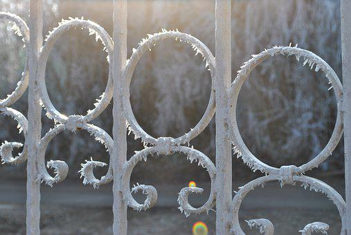 Fence, Winter, Frost, Cold, White, Wintery, Ice, Snowy