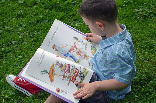 Boy, Child, Male, Young, Reading, Kid, Cute, Summer