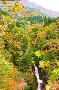 Japan, Akiyama Township, Waterfall Of Hebifuchi