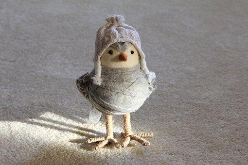 Bird, Toy, Craft, Decoration, Animal, Handmade