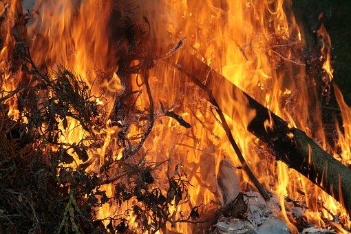 Campfire, Fire, Burn, Wood, Flame, Heat, Adventure