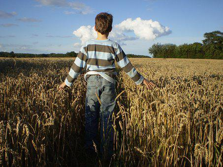 Thanksgiving, Child, Autumn, Cereals, Harvest, Bread