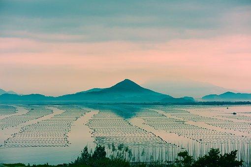 Fujian, Xiapu, Shoals, Morning, The Scenery