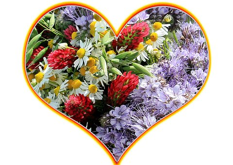 Heart, Flower Heart, Love, Valentine's Day, Greeting