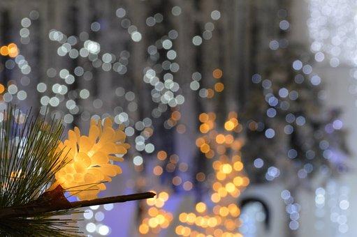 Christmas Lights, Bokeh, Led Lights, Christmas, Holiday