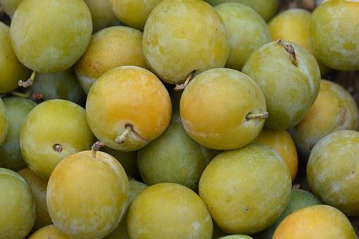 Reine Claude, Plums, Nature, Fruit