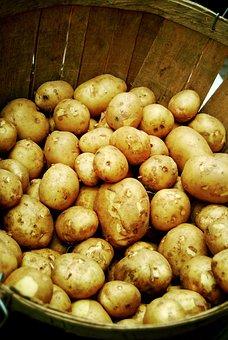 Potatoes, Vegetable, Potato, Crop, Farmer, Market