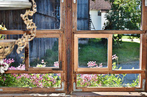 Window, Old, Ailing, Flowers, Atmosphere, View, See