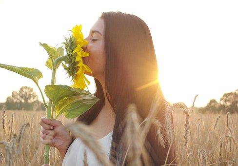Woman, Summer, Sunflower, Sun, Evening, Outdoor