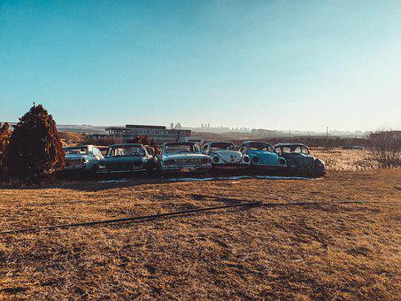 Bug, Volkswagen, Scrap, Terry, Old, Classic