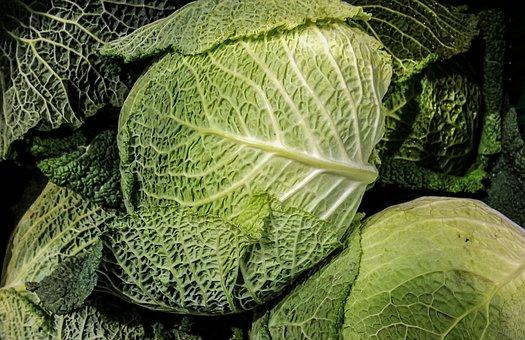 Savoy, Kohl, Vegetables, Healthy, Vitamins, Eat, Food