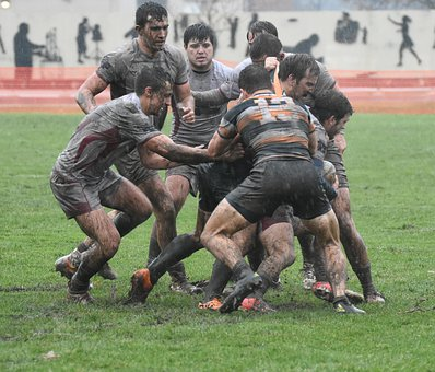 Rugby, Sport, Players, Teamwork, Match, Play, College