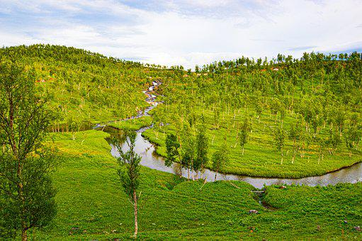 River, Norway, Europe, Trees, Green