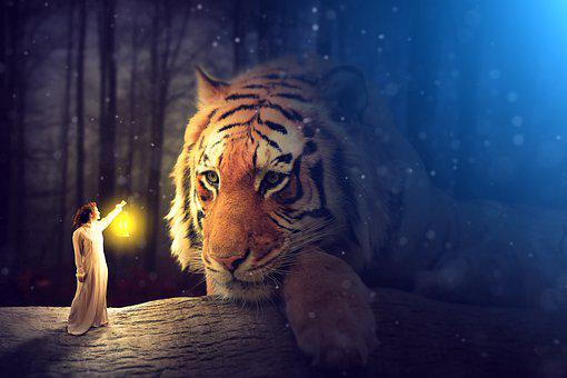 Bored Tiger In Twilight, Tiger, Lamp, Fairy Tale, Tales