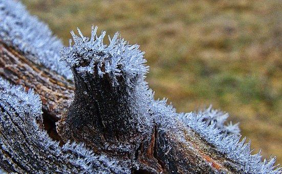 Fence, Bar, Hoarfrost, Ripe, Eiskristalle, Cold, Frozen
