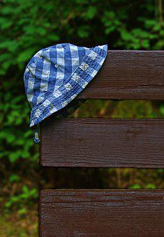 Coneflower, Headwear, Lost, Sun Protection