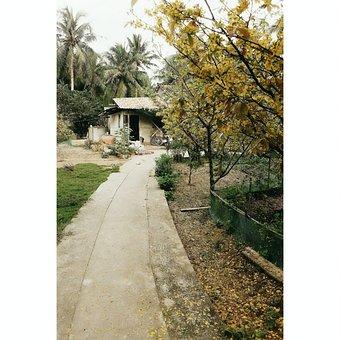 Village, Trees, Spring, Landscape, House