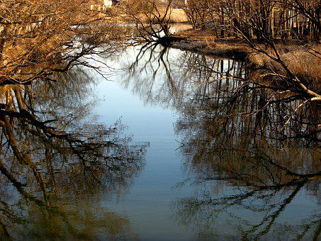 Natural, Landscape, River, Wood, Forest, Water, Mirror