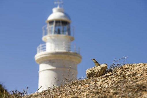 Lighthouse, Cyprus, Sea, Paphos, Architecture, Sky