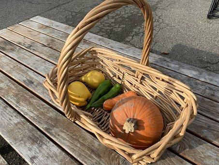 Basket, Vegetables, Squash, Pumpkin, Picnic, Magic Hour