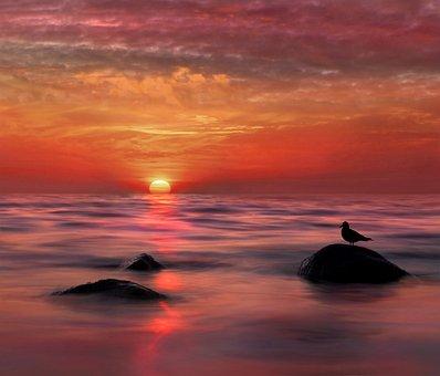 Sunset, Long Exposure, Water, Movement, Beach, Sea