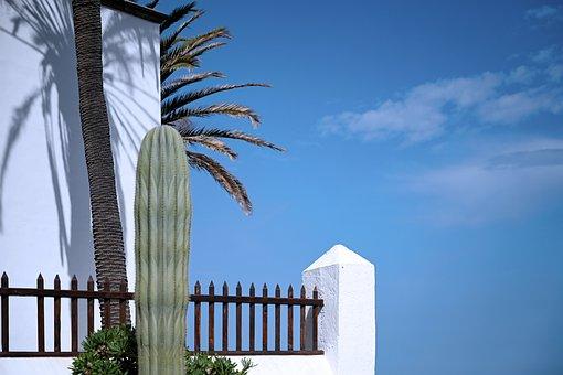 Fence, Cactus, Sky, House, White, Blue