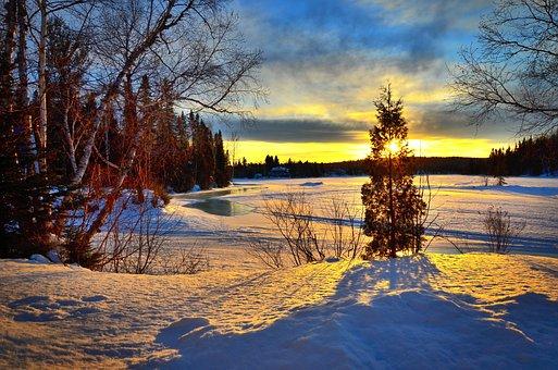 Landscape, Nature, Winter, Sky, Colors, Trees, Birch