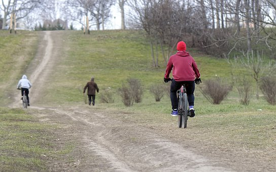 Bike, Cyclists, People, Going, Park, Nature, The Slope