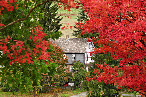 Autumn, House, Leaves, Red, Nature, September, Color