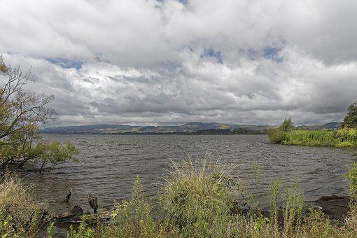 New Zealand, Lake Rotorua, Lake, Water