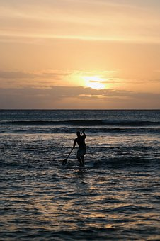 Sunset, Sea, Standup Paddle, Silhouette