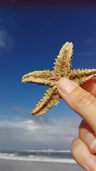 Starfish, Blue Sky, Santiago, Ocean