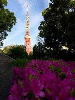 Tokyo, Japan, Tokyo 2020, Olympic Games, Summer Games