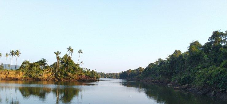 Water, Coconut Tree, India, Sky, Travel, Landscape