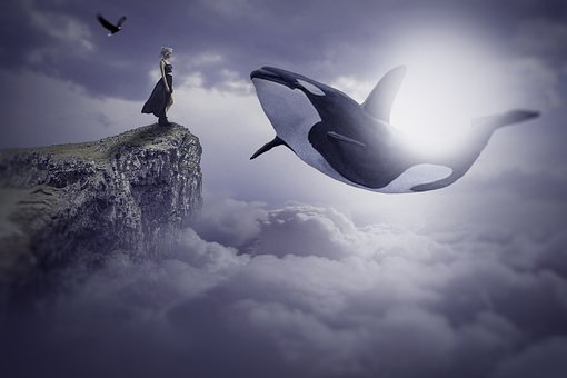 A Flying Dolphin In Air, Flying, Bird, Girl, Nature