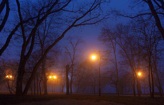 Park, Winter, Fog, Street Lamp, Cold, Trees, Blue Sky