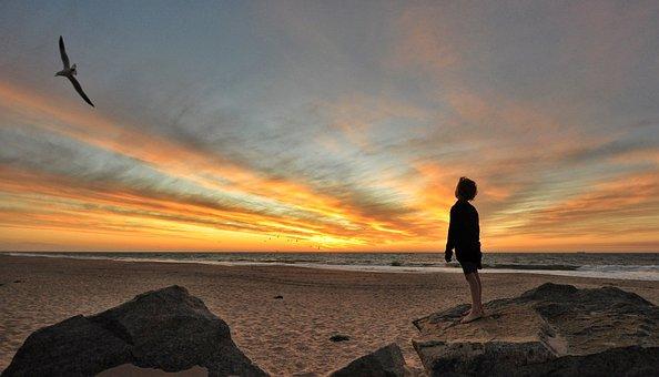 Sunset, Sky, Boy, Bird, Ocean, Landscape