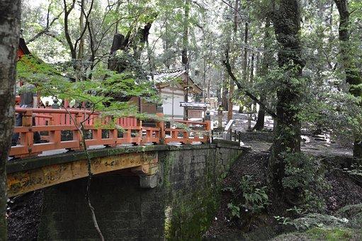 Japan, Nature, Bridge, River, Forest